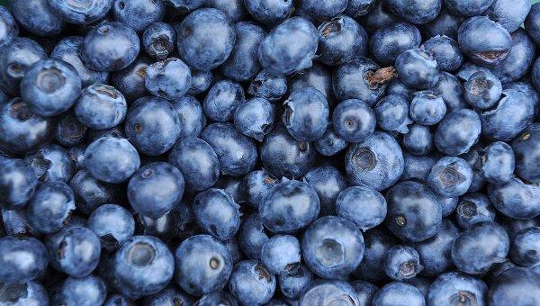 frischen Obst und Beeren
